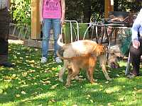 Gerda und Betty 20.10.2012